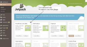 Jetpack WordPress stats plugin active