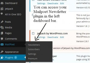 Mailpoet newsletter plugin 4 options